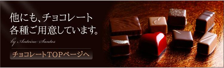 各このほか、種チョコレートはこちら