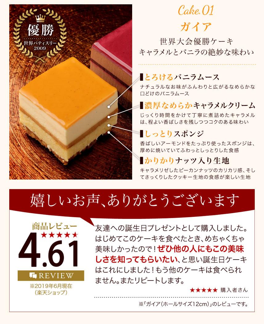 世界大会優勝ケーキ「ガイア」(キャラメル&バニラ)