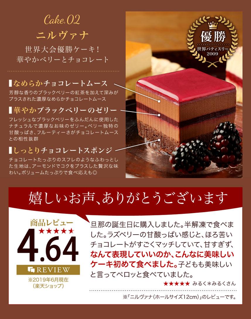 世界大会優勝ケーキ「ニルヴァナ」(ブラックベリー&チョコレート)