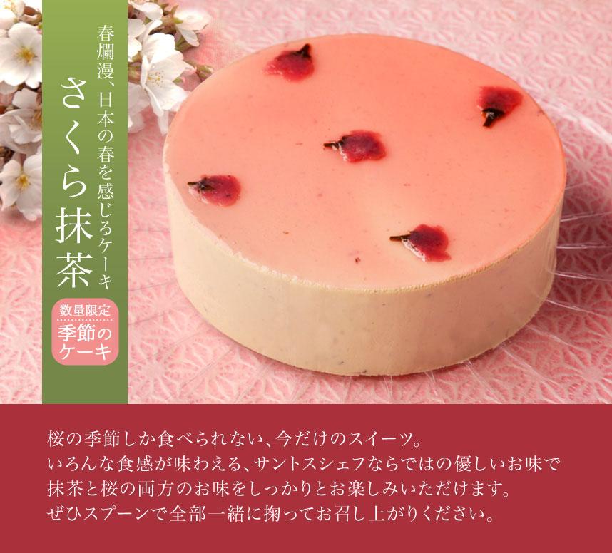 春爛漫、日本の春を感じる季節のケーキ「さくら抹茶」