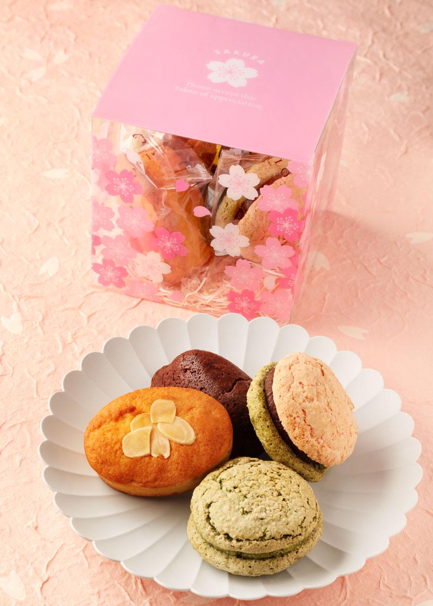 桜ちょこっとBOX